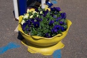 Tyre Planter