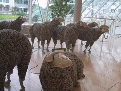 Telephonic sheep