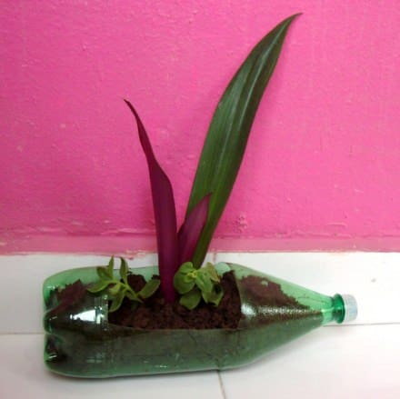 Plastic bottle pot for plants