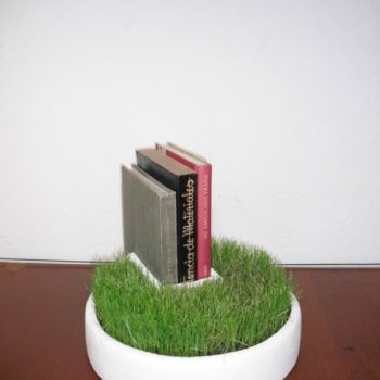 Styrofoam Packaging Into Bookseller Grass