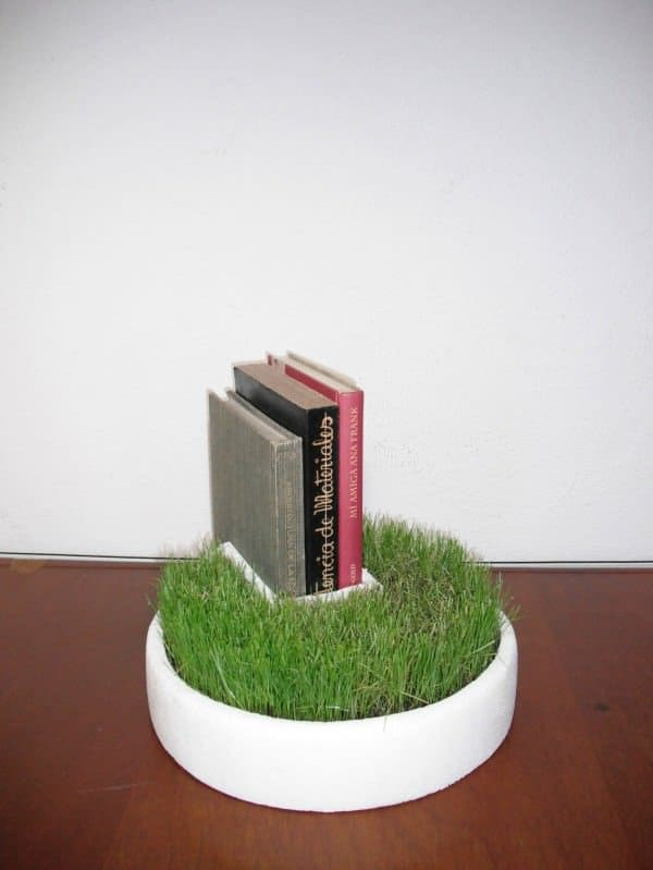 Styrofoam Packaging Into Bookseller Grass Accessories