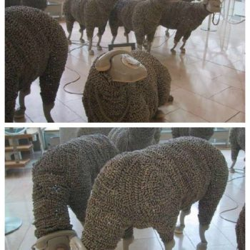 Telephonic Sheep