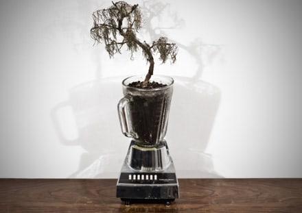 Blender plant pot