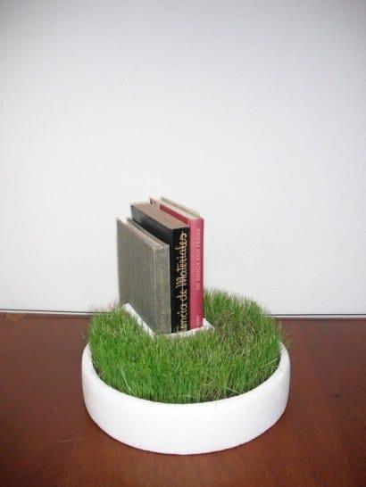 Bookseller grass