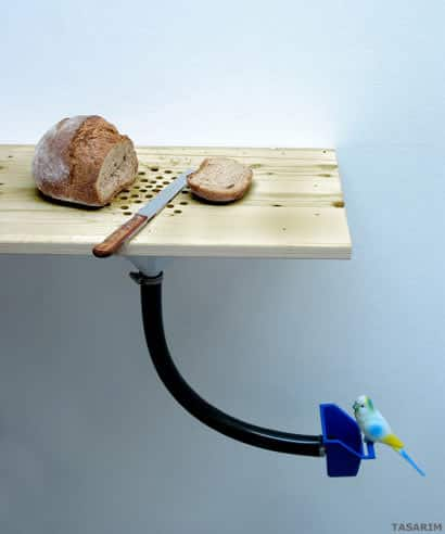 Ingenious Bird Feeder