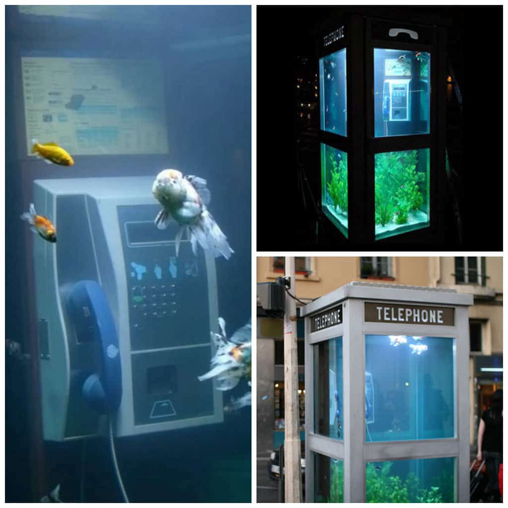 Aquarium Phone Booth Recycled Ideas Recyclart