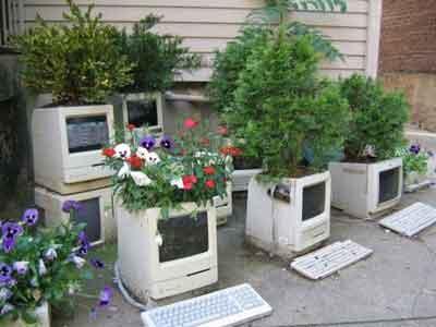 Computer vase