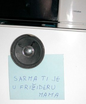Speaker fridge magnet