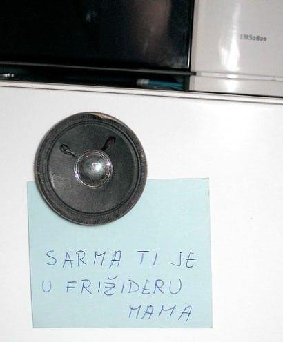 Speaker fridge magnet