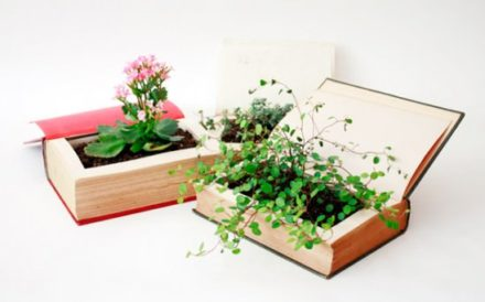 Used Book Turned Into Flowerpot