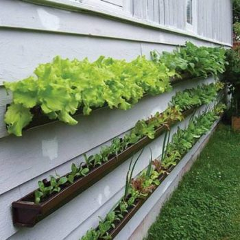 Repurposed rain gutters