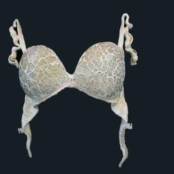 Sculptured lingerie