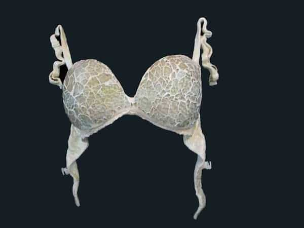 Sculptured Lingerie Recycled Art