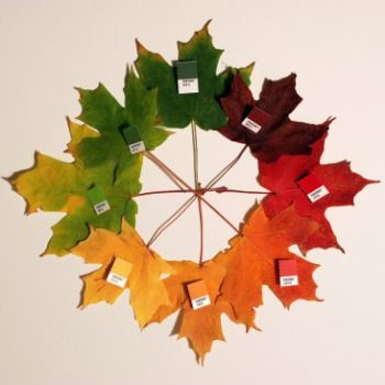 Pantone Autumn