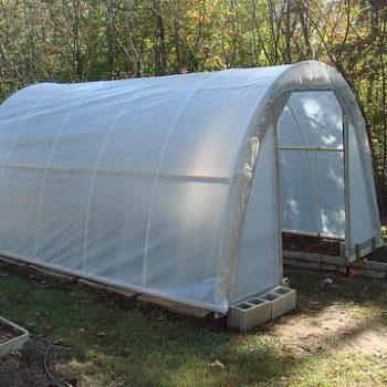 50$ Garden Greenhouse