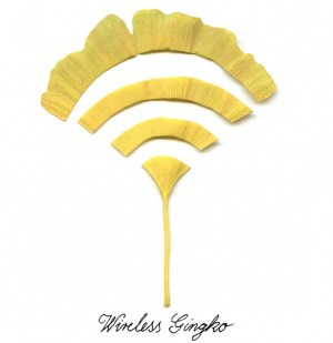 Wireless Ginko (and other leaves messages)