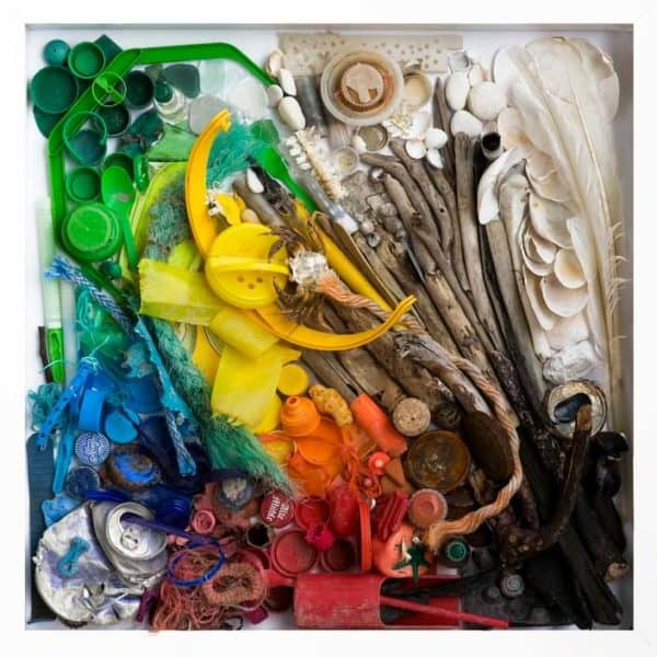 Beached Art by Anke Paap Recycled Art