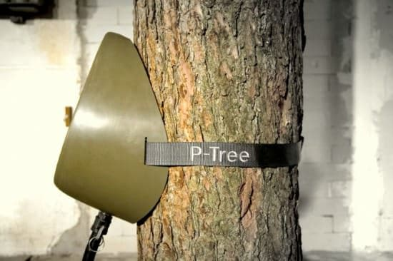 P-tree Interactive, Happening & Street Art