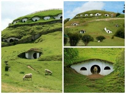 Hobbiton used by sheeps