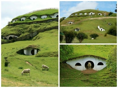 Hobbiton used by sheeps