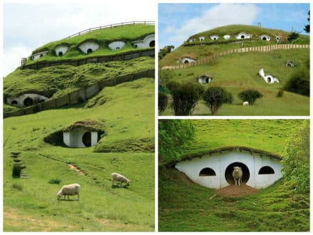 Hobbitons Reused As Houses For The Sheeps