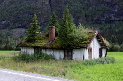 """Real"" green roofs of Norway"
