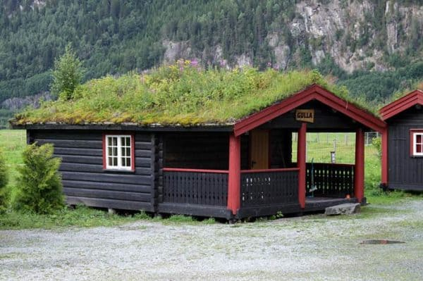 Real Grass Roofs Of Norway Home Improvement Wood & Organic