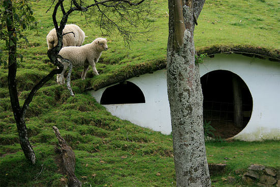 lotr village2 Hobbiton used by sheeps in wood architecture  with movie film Animal