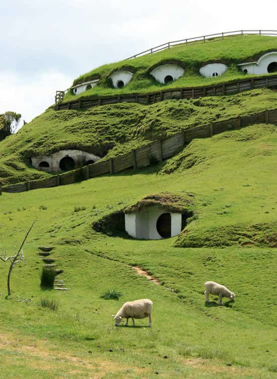 lotr Hobbiton used by sheeps in wood architecture  with movie film Animal