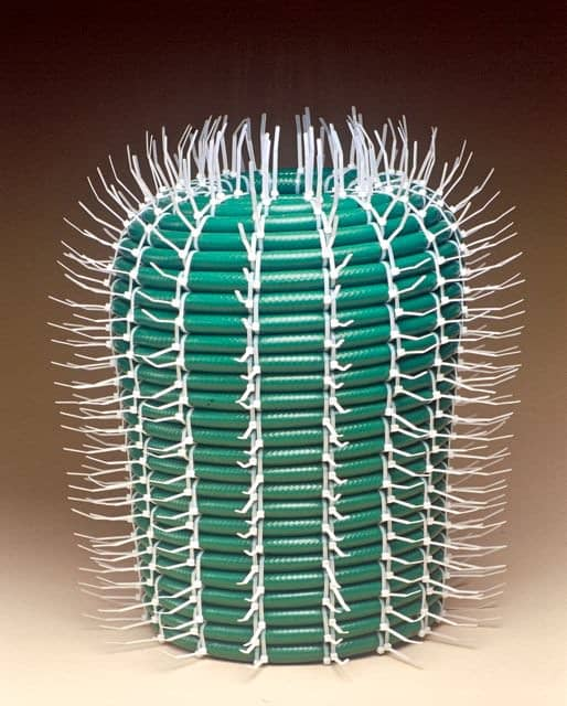 Hose cactus in social plastics art  with WC valve Hose cactus
