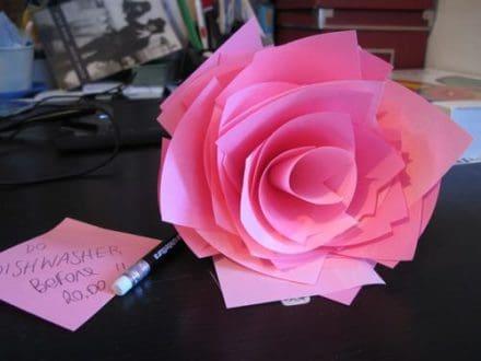 Rose it