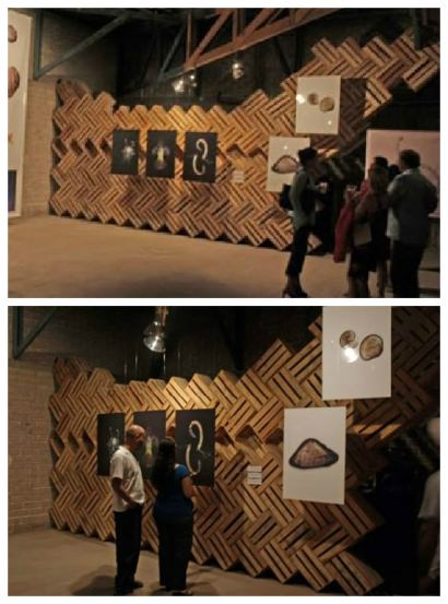 Wooden Crates Wall