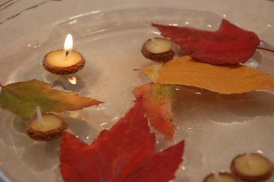 Cap Floating Candles Wood & Organic