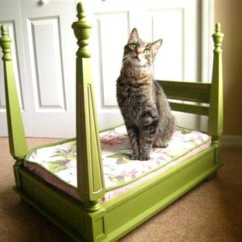 Deluxe Cat Bed