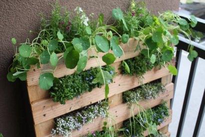 DIY : Pallet Garden