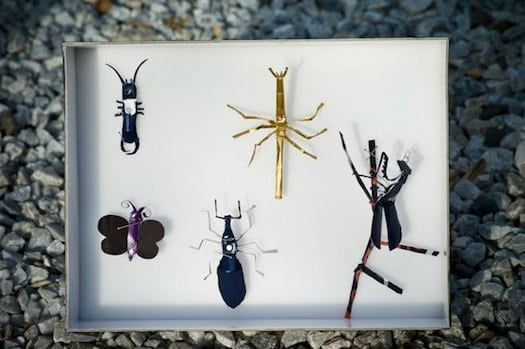 Nespresso Caps Insects Recycled Art Recycled Packaging