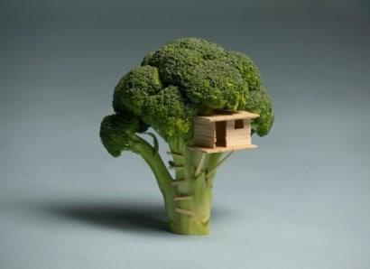 Broccoli house