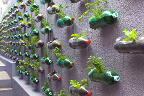 Plastic bottles garden in social plastics packagings diy architecture  with Plastic Garden Bottle