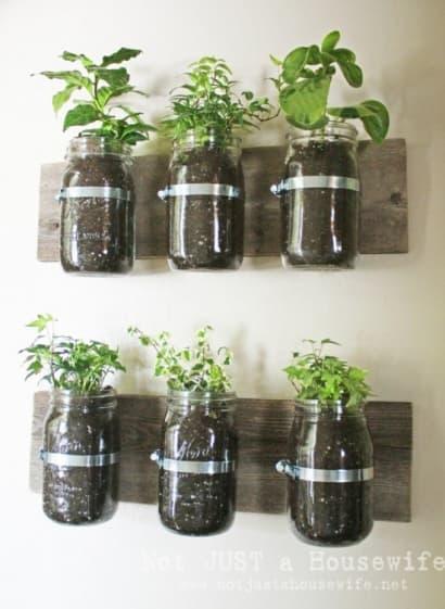 Jar wall planter