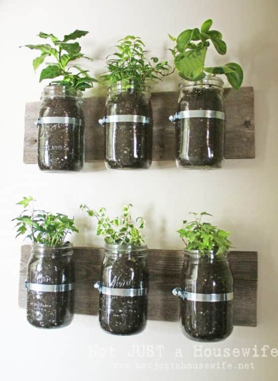 jar planter board 747x1024 Jar wall planter in wood diy  with planter kitchen Jar Garden 