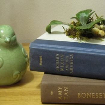 Old Book DIY Planter