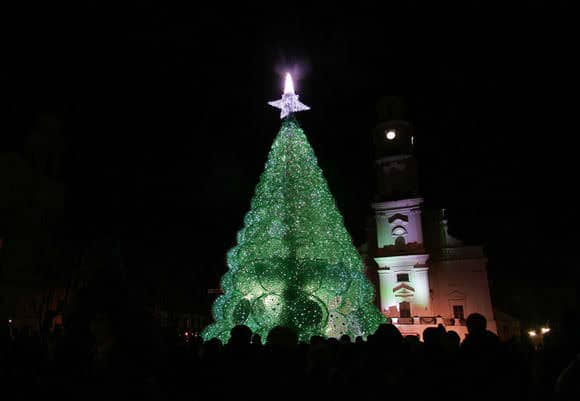 132301573624  Christmas Tree Made from 40,000 Recycled Plastic Bottles in social plastics packagings  with Zip Tree Holiday Christmas Bottle 