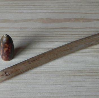 Kiwi wooden pen