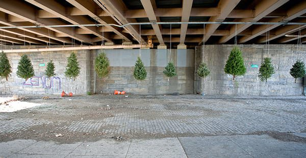 Recycled Christmas Tree Installation by Michael Neff in art  with Street Art