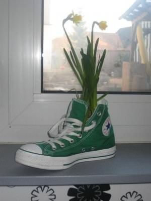 chucks2 Chucks Flowers in accessories  with shoes Flower Converse