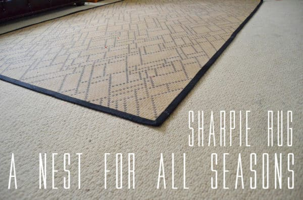 The Sharpie Rug by 'a Nest for All Seasons' Do-It-Yourself Ideas