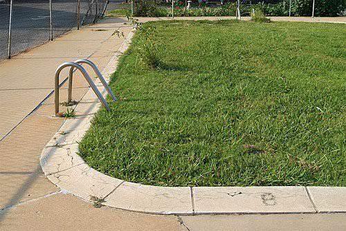 Lawn Pool Garden Ideas