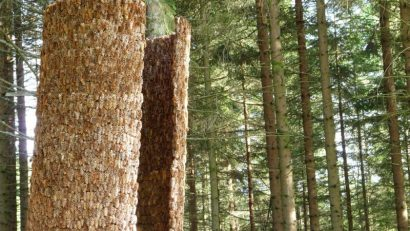 Inner Forest