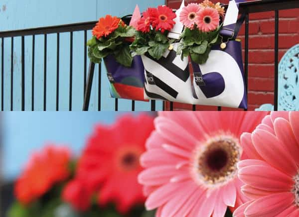 Flower pots in diy accessories  with Vinyl Records spring otra Flowers Color Balcony