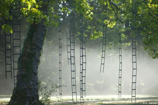Larbre aux échelles (Ladders tree) in wood social art  with Tree Land Art ladder